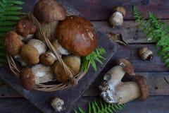Sammansättning av porcinien i korgen på träbakgrund Vita ätliga lösa champinjoner kopiera avstånd för din text Royaltyfri Foto