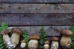 Sammansättning av porcinien i korgen på träbakgrund Vita ätliga lösa champinjoner kopiera avstånd för din text Arkivbild