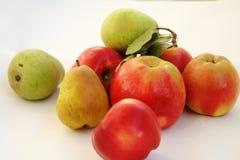 Sammansättning av röda äpplen och gröna päron royaltyfri fotografi