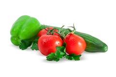 Sammansättning av tomater, gurkan, spansk peppar och persilja Royaltyfria Bilder