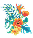 Sammansättning av tropiska växter Royaltyfri Fotografi