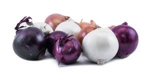 Sammansättning av violeten - blått-, vit- och ockralökar på en vit bakgrund Arkivfoton
