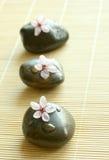 sammansättning blommar rosa brunnsortstenar Royaltyfri Fotografi