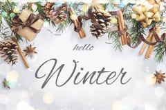 Sammansättning för jul och för nytt år Gåvaasken med bandet, gran förgrena sig med kottar, stjärnaanis, kanel på vit bakgrund arkivbilder