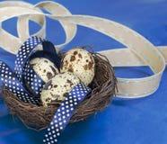 Sammansättning för påskägg i blåa signaler Royaltyfria Bilder