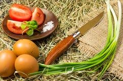 Sammansättning i en lantlig stil Klassiska kniv och grönsaker Arkivfoto