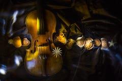 sammansättning med en gammal fiol i mörka färger royaltyfri bild