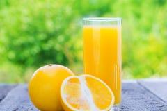 Sammansättning med exponeringsglas av orange fruktsaft Royaltyfria Bilder