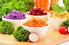 Sammansättning med fyra grönsaksalladbunkar Royaltyfri Fotografi