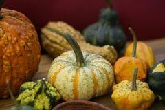 Sammansättning med halloween pumpor Arkivbild