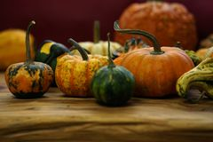 Sammansättning med halloween pumpor Arkivbilder