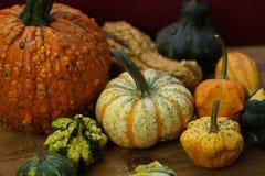 Sammansättning med halloween pumpor Royaltyfri Fotografi
