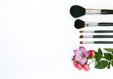 Sammansättning med makeupskönhetsmedel, borstar och blommar på vit bakgrund fotografering för bildbyråer