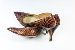 Sammansättning med skor för snakeskin för brunt för tappningkvinna` s, en över annan, på vit Royaltyfri Bild