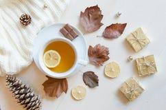 Sammansättning med te, sidor, kottar, citronen och den stack tröjan Bästa sikt, lekmanna- lägenhet arkivbild