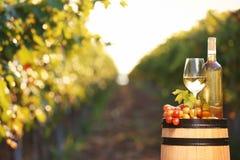 Sammansättning med vin och mogna druvor på trumma utomhus royaltyfri foto