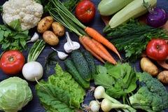 Sammansättning på en mörk bakgrund av organiska vegetariska produkter: gröna lövrika grönsaker, morötter, zucchini, potatisar, lö Royaltyfri Fotografi