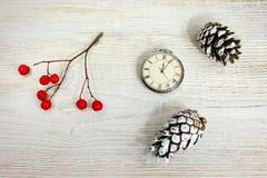 Sammansättning röda bär en retro klocka och sörjer kottar på en vit trätabell Royaltyfri Foto