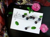 Sammansättning som gjordes av plommoner, gällde med ämnet av musik Royaltyfria Foton