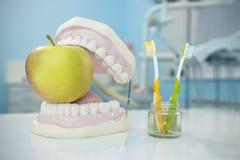 sammansättning Tandprotes, äpple och tandborstar i exponeringsglas Royaltyfria Bilder
