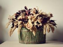 sammansättning torkade blommor Fotografering för Bildbyråer