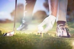 Sammansatt bild av golfaren som förlägger golfboll på utslagsplats arkivbild