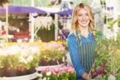 Sammansatt bild av ståenden av hållande grönsaker för ung kvinna i vide- korg arkivfoto