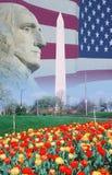 Sammansatt bild av Washington Monument, amerikanska flaggan och profilen av George Washington Fotografering för Bildbyråer