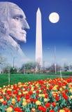 Sammansatt bild av Washington Monument, fullmånen och profilen av George Washington Royaltyfri Bild