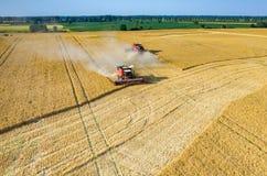Sammanslutningar och traktorer som arbetar på vetefältet Royaltyfri Foto