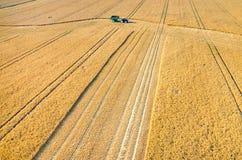 Sammanslutningar och traktorer som arbetar på vetefältet Arkivfoton