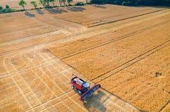 Sammanslutningar och traktorer som arbetar på vetefältet Fotografering för Bildbyråer
