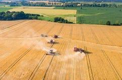 Sammanslutningar och traktorer som arbetar på vetefältet Arkivfoto