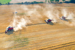 Sammanslutningar och traktorer som arbetar på vetefältet Royaltyfri Bild