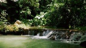 Sammanställning för vattenfall för bergflod liten stock video