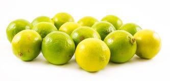 Sammansättning av en guling och gräsplancitroner och limefrukt på en vit bakgrund Royaltyfri Foto