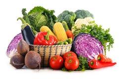 Sammansättning med variation av nya rå organiska grönsaker Arkivfoto