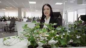 Sammanträde för affärskvinna på ett skrivbord stock video