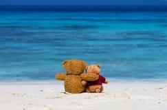 Sammanträde för färg för brunt för BJÖRN för NALLE två på den härliga stranden med b Arkivbilder