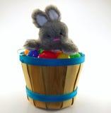 Sammanträde för kaninkanin på blandade easter ägg på trähinken Fotografering för Bildbyråer