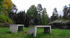 Sammanträdebänk för två sten i en parkera royaltyfri foto