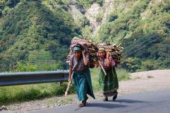 Sammeln des Brennholzes in Guatemala Lizenzfreie Stockbilder