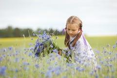 Sammelnblumen des kleinen Mädchens Stockfotografie