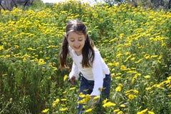 Sammelnblumen des kleinen Mädchens Stockfoto