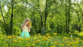 Sammelnlöwenzahn des kleinen Mädchens in einer sonnigen Wiese stock footage