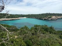 Sammer at the mare nostrum. Mediterranean sea with forest water sun paradise Stock Photo