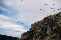 Baikal 2017. 2017 sammer, photo project, Baikal, love Royalty Free Stock Images