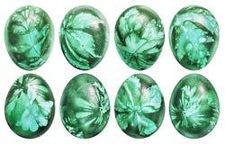 Sammlung acht Osterei-gefärbten Emerald Green And Decorated With-Unkrauts lässt Impressen lokalisiert auf weißem Hintergrund Lizenzfreie Stockfotografie