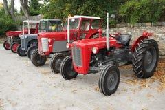 Sammlung alte Traktoren Massey Ferguson stockbild