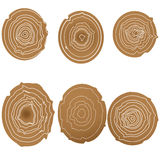 Sammlung Baumringhintergrund Stockbild